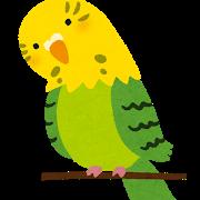 フクロウの脚、クソ長いことが判明するwwwwwwwwww
