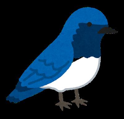 bird_ooruri.png