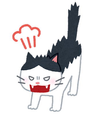 cat_angry.png