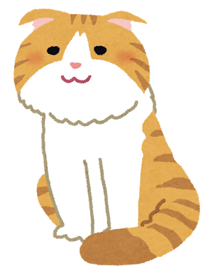 cat_scottish_fold.png