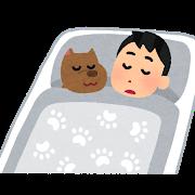 pet_inu_sleep.png
